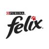 Felix (Феликс)