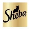 Sheba (Шеба)