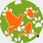 Для экзотических птиц