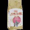 """Сухой корм """"Роял Канин"""" Киттен Британские короткош. 2 кг"""