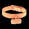 Ошейник Пижон нубук с медальоном  Лидер оранжевый с фурнитурой серебро (714193)