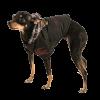 АрниДог Куртка Burberry Чёрная с капюшоном (М-В0001-1)